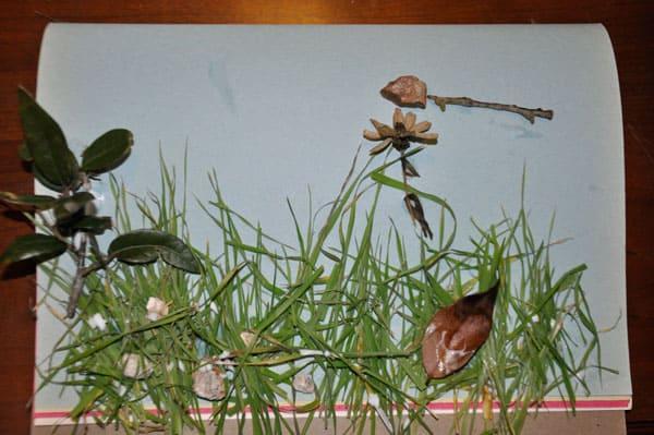 Botany Project @jasminejlucero