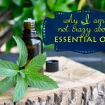 Thoughts on the Use of Essential Oils
