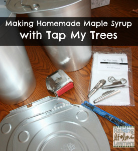 Making-Homemade-Maple-Syrup-with-Tap-My-Trees