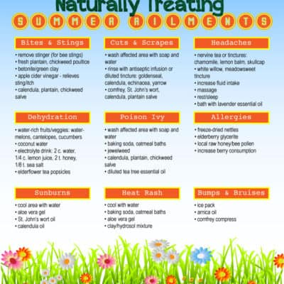 Naturally Treating Summer Ailments