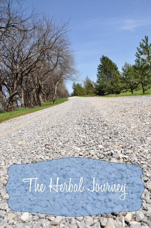 The-Herbal-Journey