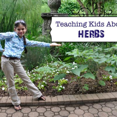 Teaching Kids About Herbs