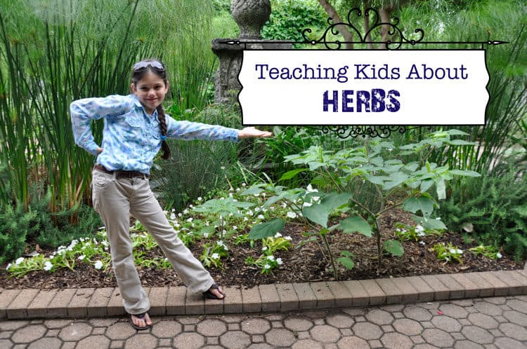 Teaching Kids About Herbs