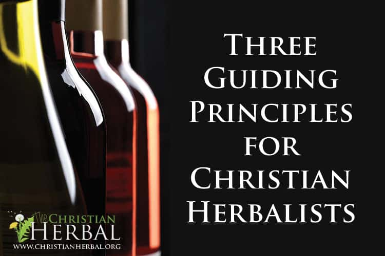 three-guiding-principles